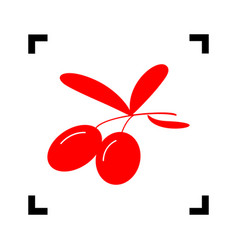 olives sign red icon inside vector image