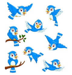 set of blue bird cartoon posing vector image