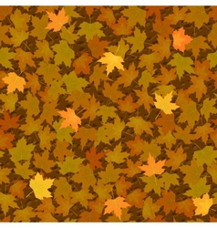 Autumn yellow maple leaf seamless pattern vector image