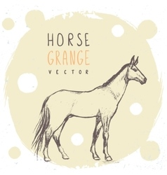 Horse pencil drawing vector