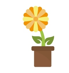 Isolated flower with leaves design vector