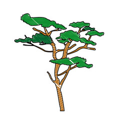 Tree plant nature branch trunk foliage vector