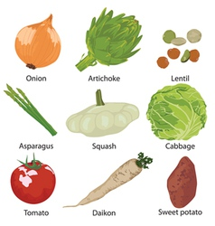 Set vegetables isolated vector