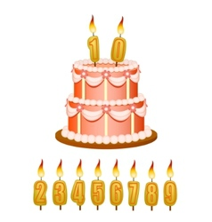 Anniversary cake with candles vector