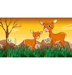 Two deers near the grass vector