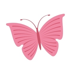 Cute butterfly pink icon vector