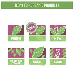 Icons - organic vector image
