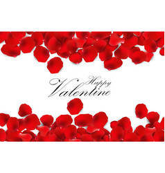 Red rose petals on a white background vector