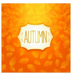 Autumn badge design vector