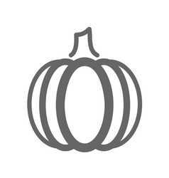 Pumpkin outline icon vegetable vector