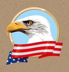 USA SIMBOL vector image