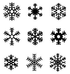 black snowflakes 2 vector image