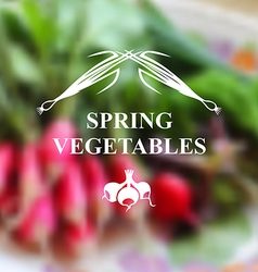Spring vegetables vector
