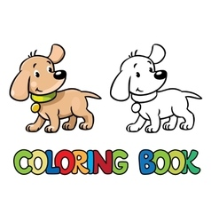 Funny puppy coloring book vector