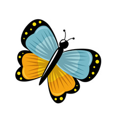 Cute butterfly flying icon vector