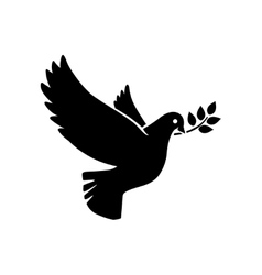 Flying dove with olive twig icon vector image