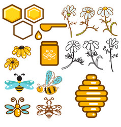Honeybee and flowers apiary icon set vector