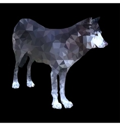 Low poly wolf vector