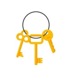 Keys hanging on key ring vector image