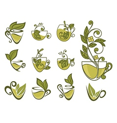Organic tea collection vector