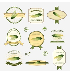 Cucumber set of label design vector