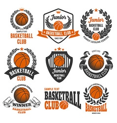 Basketball logo set vector image vector image