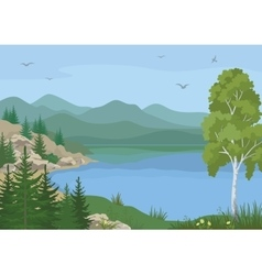 Landscape with trees and mountain lake vector