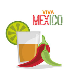 viva mexico greeting tequila celebration vector image vector image
