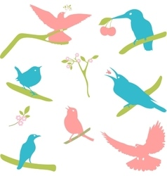 Collection of bird silhouettes colored vector