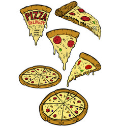 Set of pizza design elements for poster menu vector