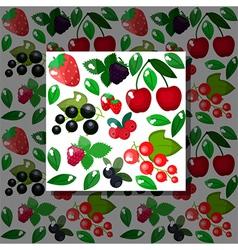 Berries pattern vector image vector image