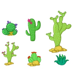 Different types of cactus plants realistic vector image