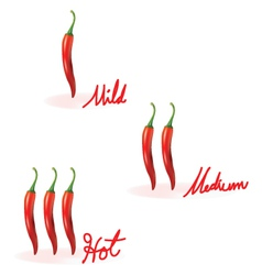 Red chilli heat guide vector