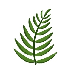 leaf palm nature isolated icon vector image