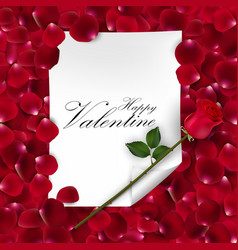 Pink rose with blank paper for text vector