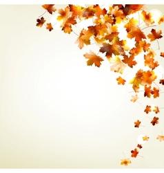 Autumn falling leaves eps 10 vector