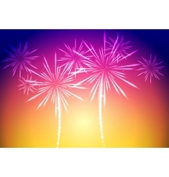 Bright fireworks background vector