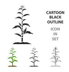 corn icon cartoon single plant icon from the big vector image vector image