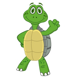 Turtle with thumb up vector image