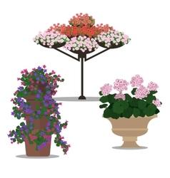 Set of floral arrangememt vector