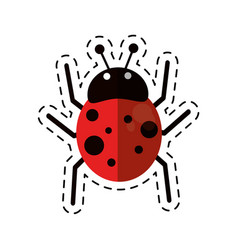 Cartoon ladybug fly antenna animal vector