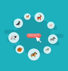 flat icons kitty horse moose and other vector image