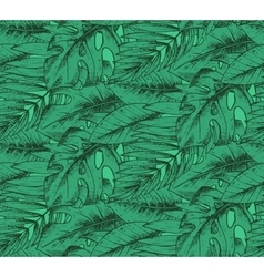 Seamless pattern with hand drawn tropical plants vector image