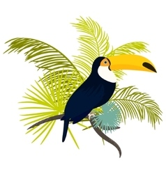 Toucan bird for tshirt apparel vector