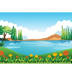 A beautiful pic of nature vector image vector image