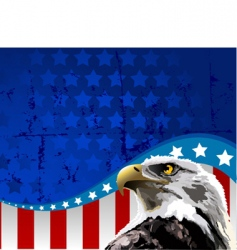 bald eagle American flag vector image
