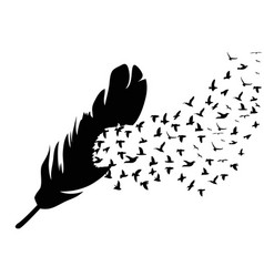 Bird flying from feather vector
