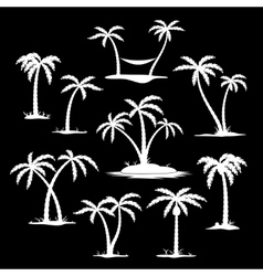 Coconut tree silhouette icons vector