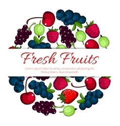 Fresh forest and garden fruits berries poster vector