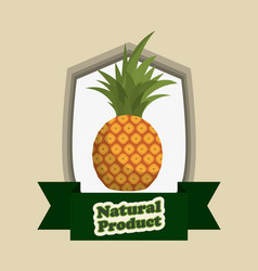 Pineapple food natural product vector
